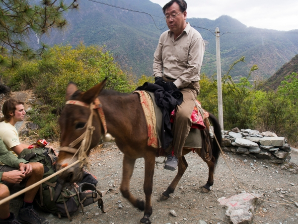 And Here's His Donkey With A Korean Victim!